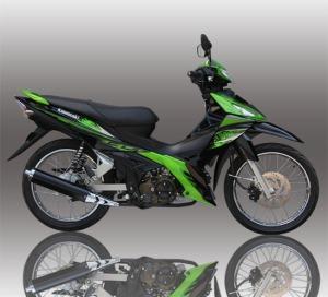 edge-r-green