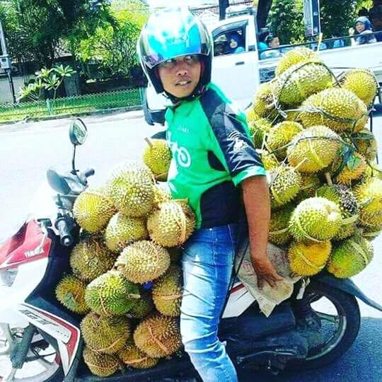 Walah, Ojol Dapat Order GoSend Durian Segebok Naik Yamaha